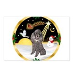Night Flight/Silver Poodle Postcards (Package of 8