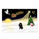 Night Flight/Poodle (min) Postcards (Package of 8)