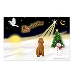 Night Flight/Std Poodle (blk) Postcards (Package o
