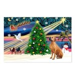 XmasMagic/Rhodesian RB Postcards (Package of 8)