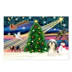 XmasMagic/Shih TzuT Postcards (Package of 8)