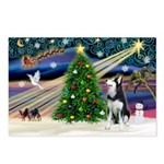 XmasMagic/Siberian Husky Postcards (Package of 8)
