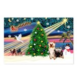 Xmas Magic & Silk Ter Postcards (Package of 8)