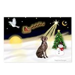Night Flight/Weimaraner #2 Postcards (Package of 8