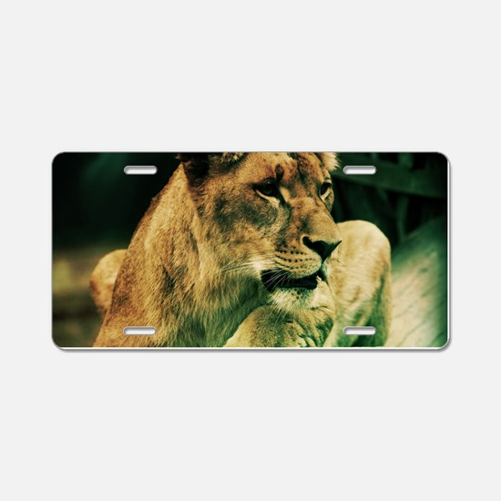 Lioness resting on a tree Aluminum License Plate