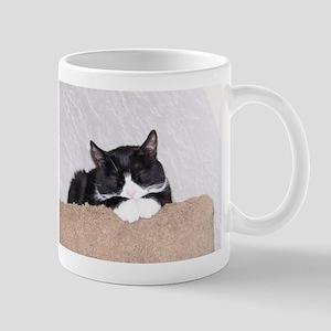 Sweet Kitty Stainless Steel Travel Mugs