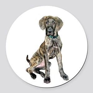 Brindle Great Dane Pup Round Car Magnet