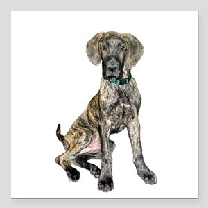 "Brindle Great Dane Pup Square Car Magnet 3"" x 3"""
