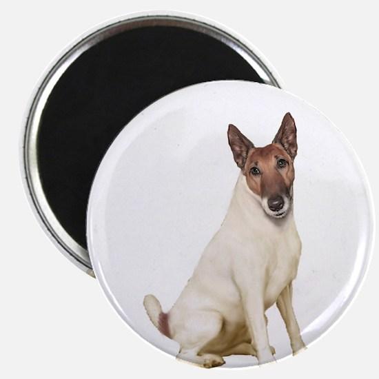Fox Terrier (brwn-w) Magnet