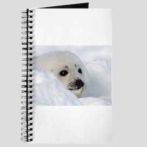fur seal Journal