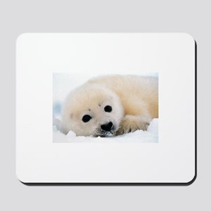 fur seal Mousepad