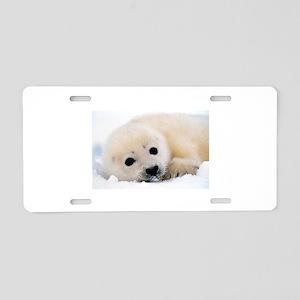 fur seal Aluminum License Plate