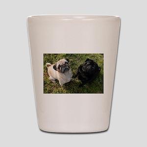 Pug Shot Glass