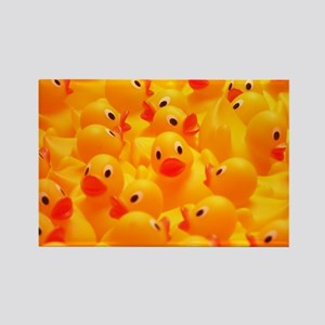 Rubber Duckies Rectangle Magnet