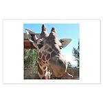 Giraffe (T) Posters
