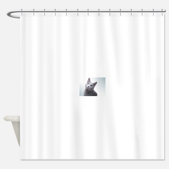 russian blue cat Shower Curtain