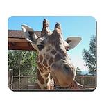Giraffe (MP) Mousepad