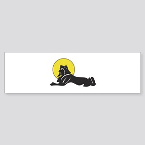 spa 161 Bumper Sticker