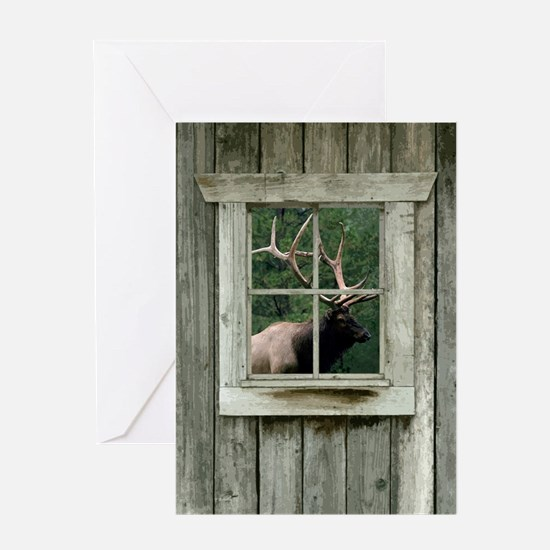 Old wood cabin window with bull elk Greeting Card