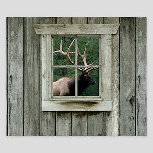 Old wood cabin window with bull elk King Duvet