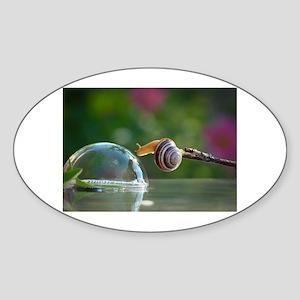 snail on a limb Sticker