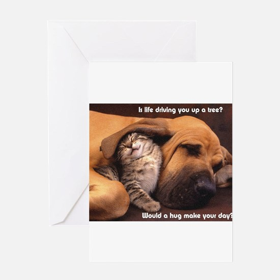 Would a Hug Make Your Day Greeting Cards