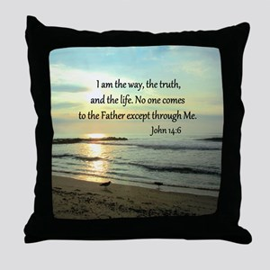 JOHN 14:6 Throw Pillow
