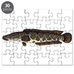 Northern Snakehead fish Puzzle