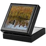 Coot on Pond Keepsake Box