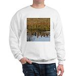 Coot on Pond Sweatshirt