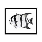 Spadefish Framed Panel Print