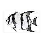 Spadefish Wall Decal