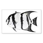 Spadefish Sticker