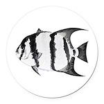 Spadefish Round Car Magnet
