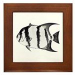 Spadefish Framed Tile