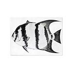 Spadefish 5'x7'Area Rug