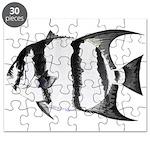 Spadefish Puzzle