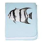 Spadefish baby blanket