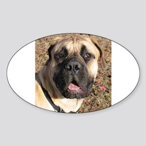 boerboel full Sticker