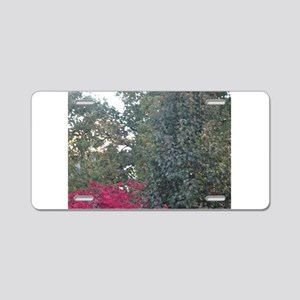 Peak-A-Boo Red Leaves Aluminum License Plate
