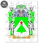 Groogan Puzzle