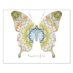 Haven Pastel Butterfly Posters
