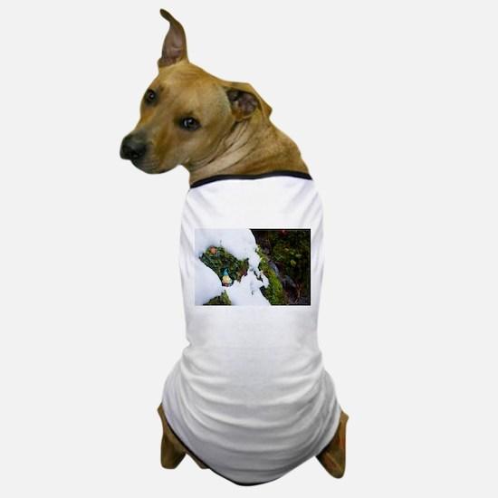 Cold Bank Gnome Dog T-Shirt