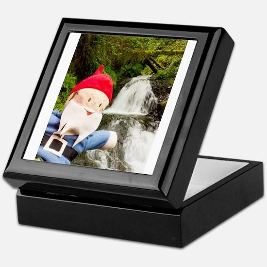 Small Falls Gus Keepsake Box