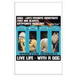 Chief Czar Live Life With A Dog Posters