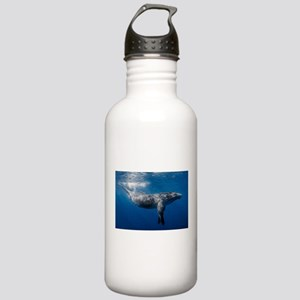 Humpback Whale Under O Stainless Water Bottle 1.0L
