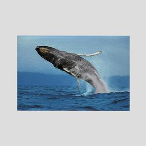 Humpback Whale Leap Rectangle Magnet