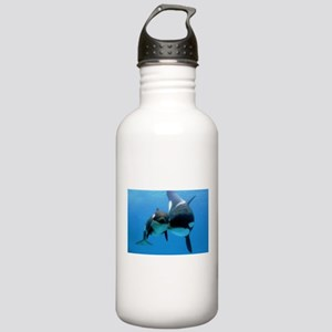 Orca Whale and Calf Stainless Water Bottle 1.0L