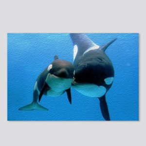 Orca Whale and Calf Postcards (Package of 8)