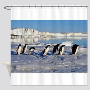 Penguin Place Shower Curtain